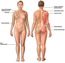 fibromyalgie-elektrosmog-en-electromagnetische-straling