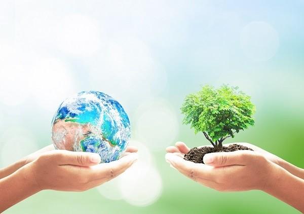 Duurzame circulaire biobased matrassen